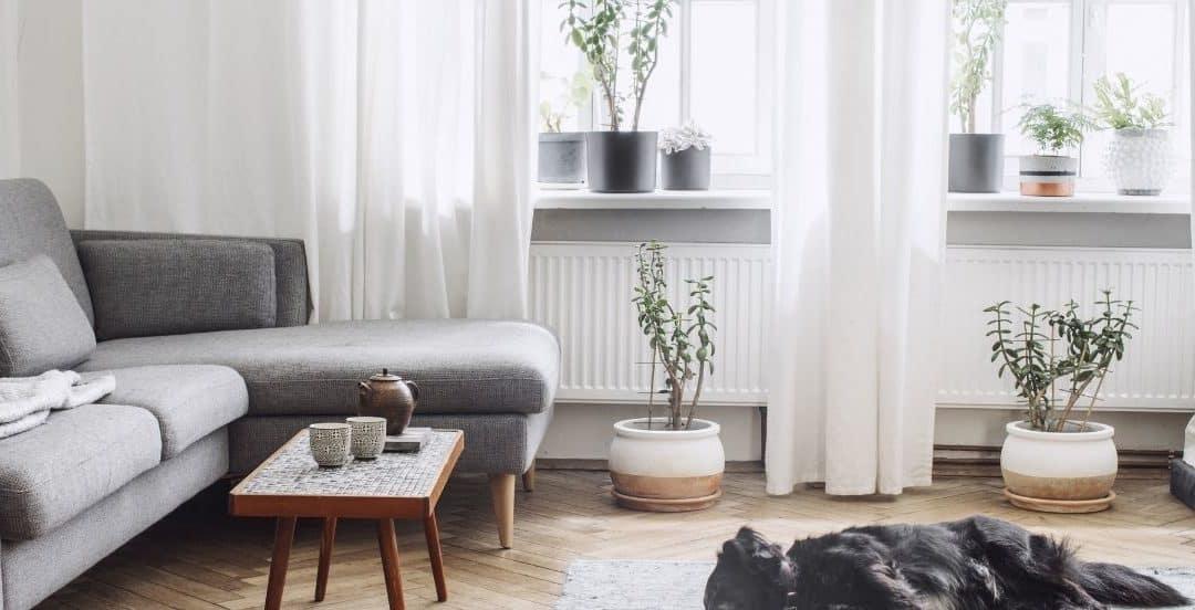 Recourir au home staging pour louer plus facilement